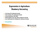 Ergonomics in Agriculture: Blueberry Harvesting
