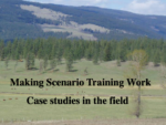 Making Scenario Training Work -Case Studies in the Field