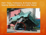 Palm Trees, Professors, & Chain Saws: Helping Farmers Listen to a Safer Future