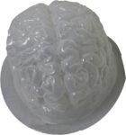 Gelatin Brain Mould
